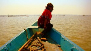 Chilika Charm - SCATTERED EXPRESSIONS...