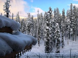 Snow-Covered Gulmarg In Photos