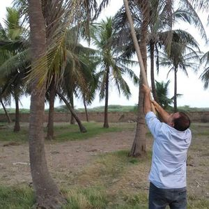 Atul Madlani Travel Blogger