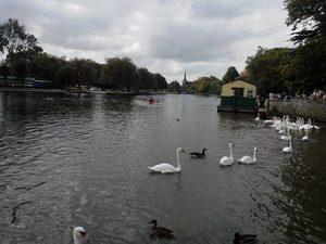 A Day at Stratford On Avon
