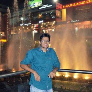 Ankit Prakash Travel Blogger
