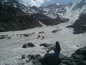 Get a glimpse of Himalaya in 3 days