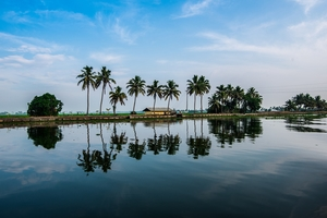 All You Need To Know About Planning A 6-Day Budget Trip To Kerala