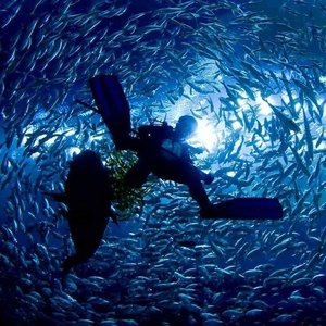 The Story of Scuba Diving- From the Instructor!