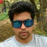 vishal s Travel Blogger