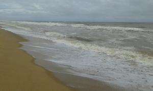 """""""Beachy"""" Delight..."""
