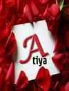 Atiya Wani Travel Blogger