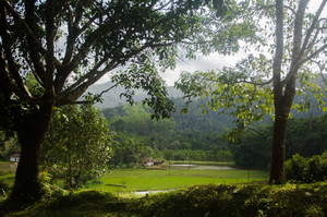 A monsoon cruise on the western ghats