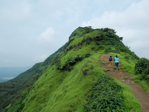 Tikona Fort – A Day's Trek