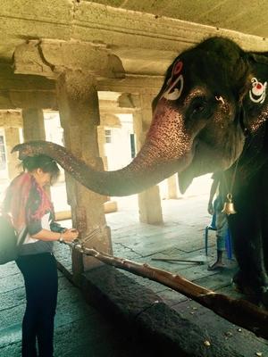 Hampi : The Once Glorious city of Vijayanagar