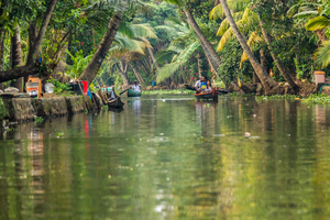 Our favourite five places to visit in Kerala, India