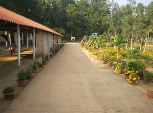 Weekend trip at Jaypur Forest Bankura(Banalata Resort)