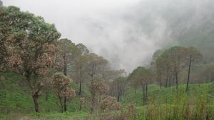 Kasauli- The Misty Wonder