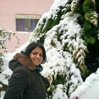Anshu Giri Travel Blogger