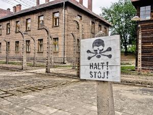 Auschwitz: First Impressions