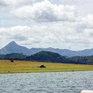 Getaway to Parambikulam