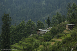 Homestay in the valley