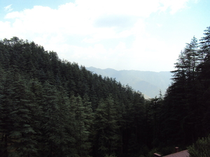 Shimla - The Queen of the Hills