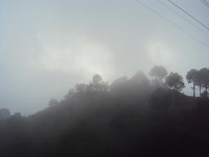 Roadtrip to Kasauli - Hideaway in the misty mountains