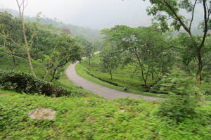 VOYAGE TO THE MOUNTAIN OF CLOUD - JHANDI (INDIA)