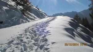 Tirthan Valley and Jalori Pass trek