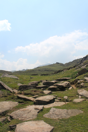 Summer Trek : Auli