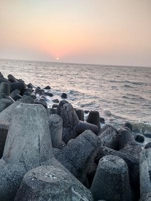 Hidden Treasure of Mumbai !