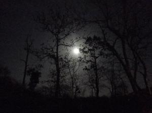 MOON LIGHT PHOTOGRAPHY