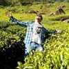 Saurabh Upadhyay Travel Blogger