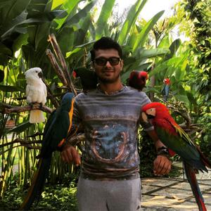 Tej Pereira Travel Blogger