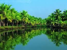 Kerala - Nature @ its best