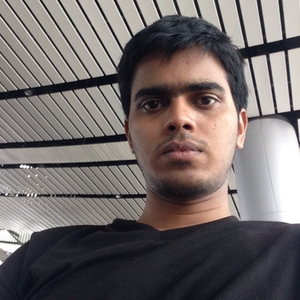 Siva Travel Blogger