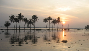 More than Backwaters....Alappuzha (Alleppey)