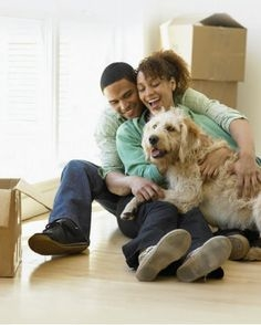 THINGS TO LOOK FOR WHILE MOVING WITH A PET