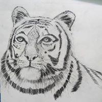 Sushant Bangalorkar Travel Blogger