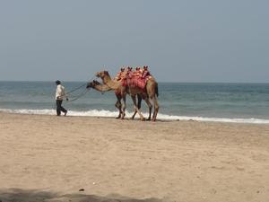 Ganpatipule- The Kokan coast of Maharashtra.....