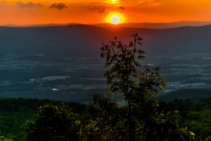 Nature's Calling! Visit Shenandoah National Park
