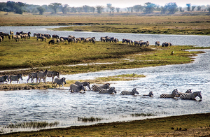 Astounding Africa: Your time has comeThe distant echo of South Africa has become a thunderous roar