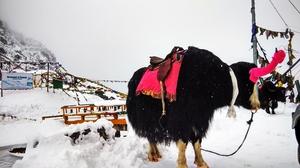 Gangtok, Sikkim