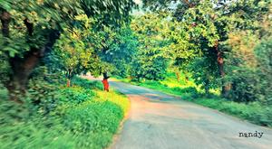 Walk through Matheran