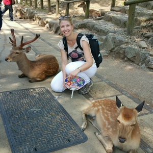 Cynthia Blog Travel Blogger