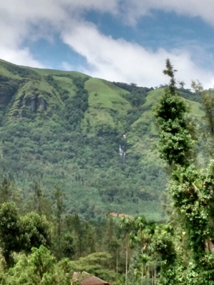 Chikmagalur - A place of scenic beauty!