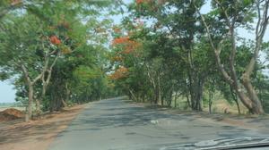 Bastar - The land of whispering Mountains - Chhattisgarh