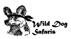 Wilddog Safaris Travel Blogger