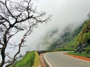 Charmadi - Crown of Western Ghats