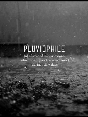 Pluviophile diaries – Bangalore during rain