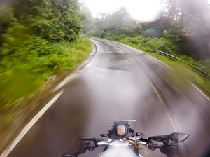 Pluviophile Diaries – Green and Wet Coorg – Mandalpatti