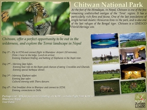 Chitwan National Park Wildlife and Luxury