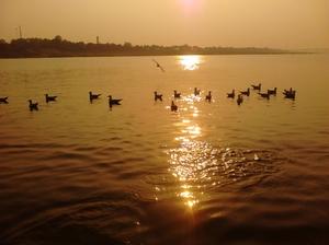 Unsullied Triveni Sangam, Allahabad