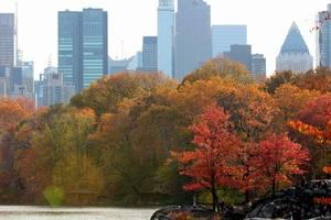 Fall foliage of New England